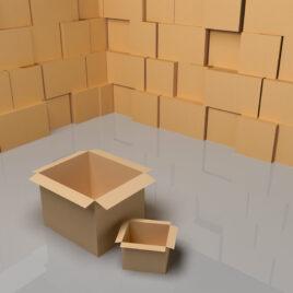 Caja Ejemplo