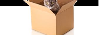 Usos de la caja de cartón