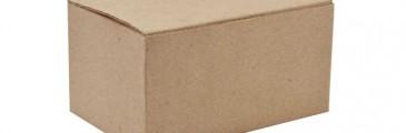 Historia de los Empaques de Cartón