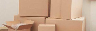 ¿Dónde Comprar Cajas de Cartón para Envíos?